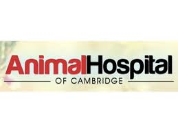 Animal Hospital of Cambridge